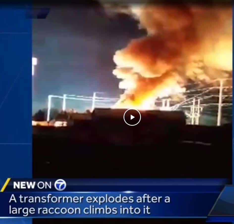 New Mexico Transformer Explosion
